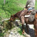 Takole pa poskrbimo, da tud konji niso žejni. Še dober, da domačini niso odstranili teh ko