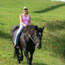 Prijazna in umirjena kobila Negra se veseli potovanja na pašnik!