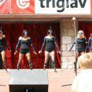 Nastop pri ribniskem gradu, 2005