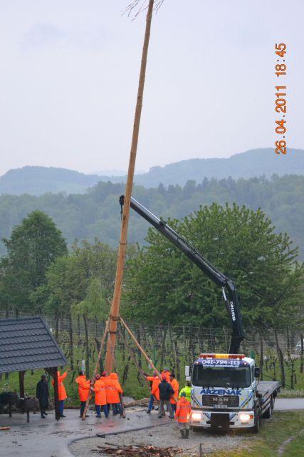 Postavljanje mlaja v Dolgi Gori - foto