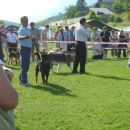 Thor Mumlek v izboru za najlepšega psa II. FCI skupine