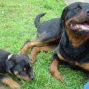 Aika in Thor, junij 2005