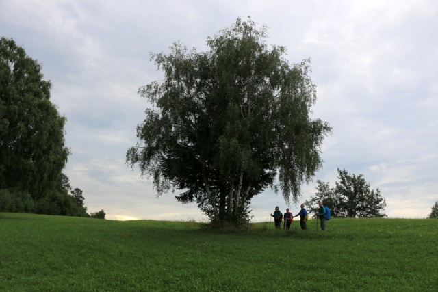 2018_08_14 Veliki Javornik ( 1023 m ) Bohor - foto