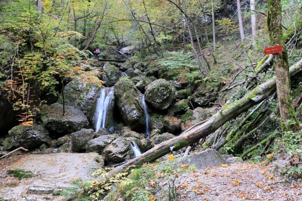 2018_10_16 Soteska Pekel pri Borovnici - foto povečava