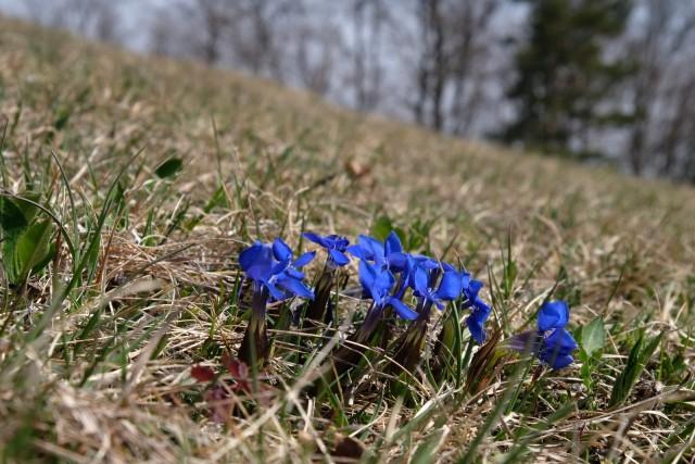 2019_04_02 Roviški vrh in Zasavska Sv. gora - foto