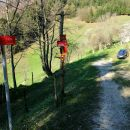 2019_04_21 Vivodnik - Menina planina