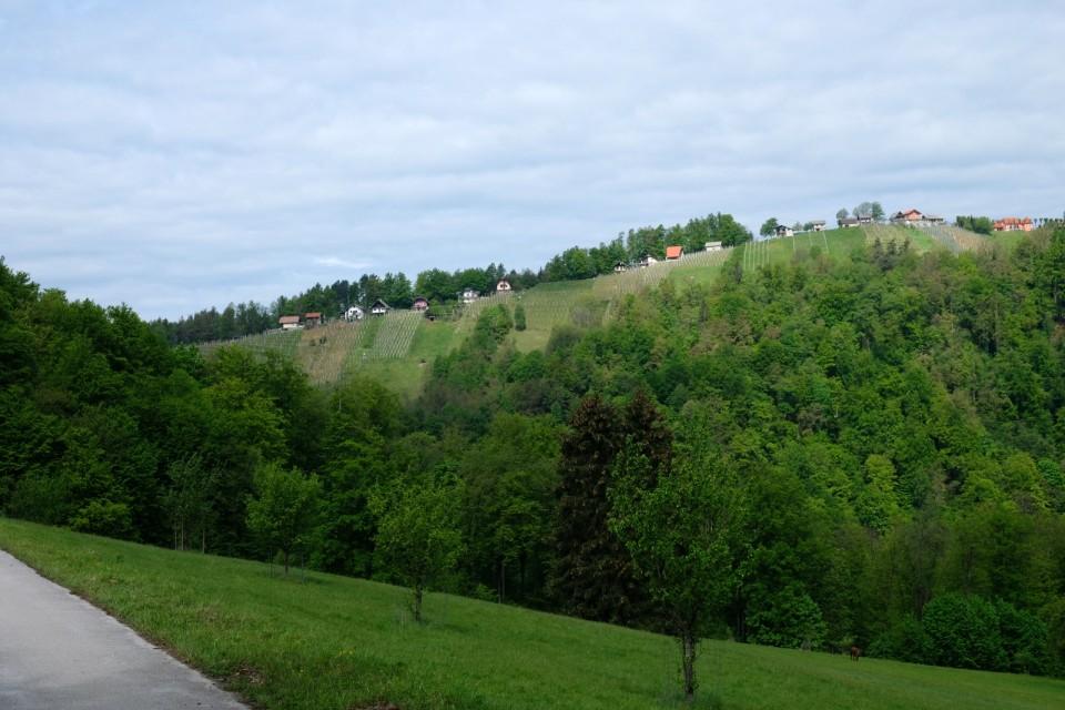 2019_04_30 pohod po delu občine Sevnica - foto povečava