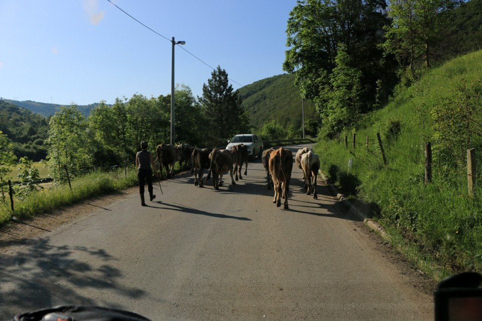 2019_06_10 6. dan - BiH in Črna gora - foto povečava