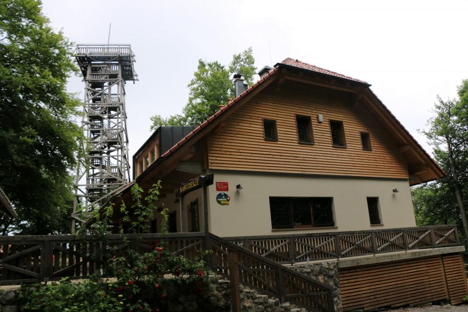 2019_06_23 Planina nad Vrhniko - foto povečava