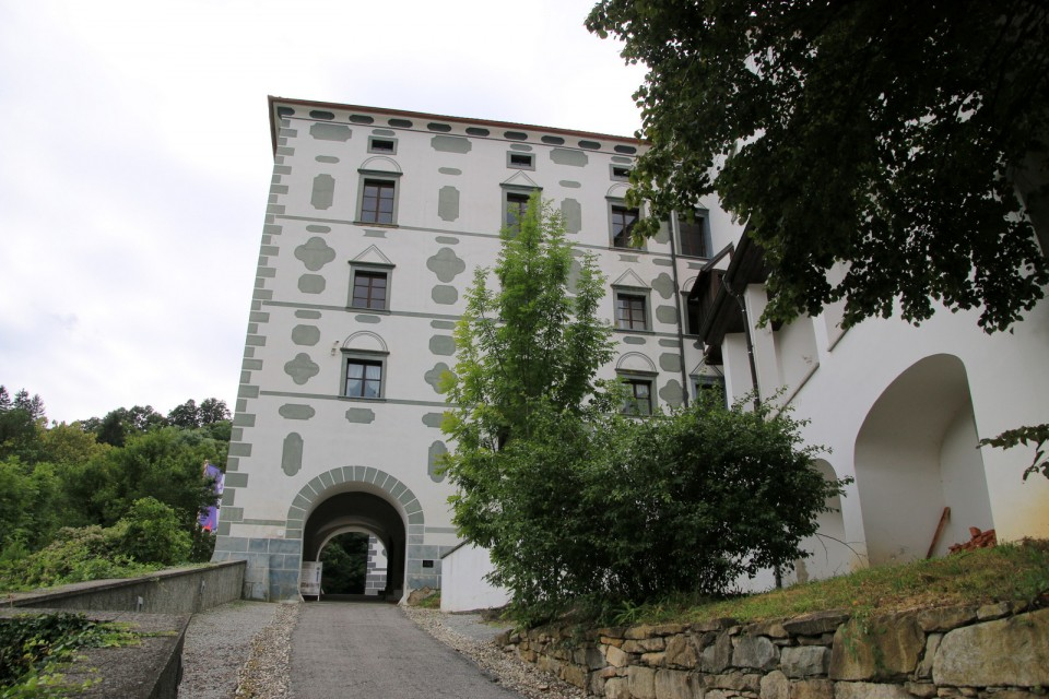 2019_08_13 Donačka gora - foto povečava