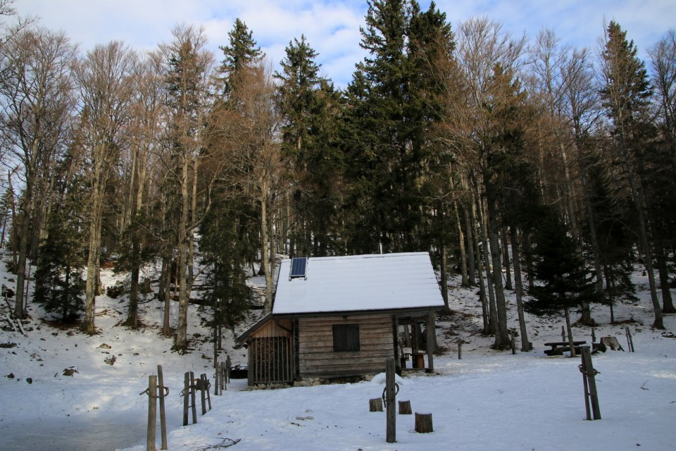 2019_12_31 Lastovec - Deska - Tolsti vrh - foto povečava