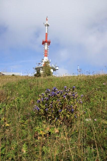 2020_09_22 Uršlja gora / Plešivec - foto