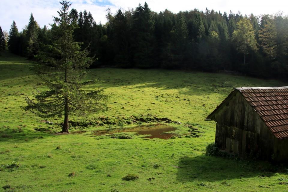 202_09_29 Vivodnik ( 1508 m ) -Menina planina - foto povečava