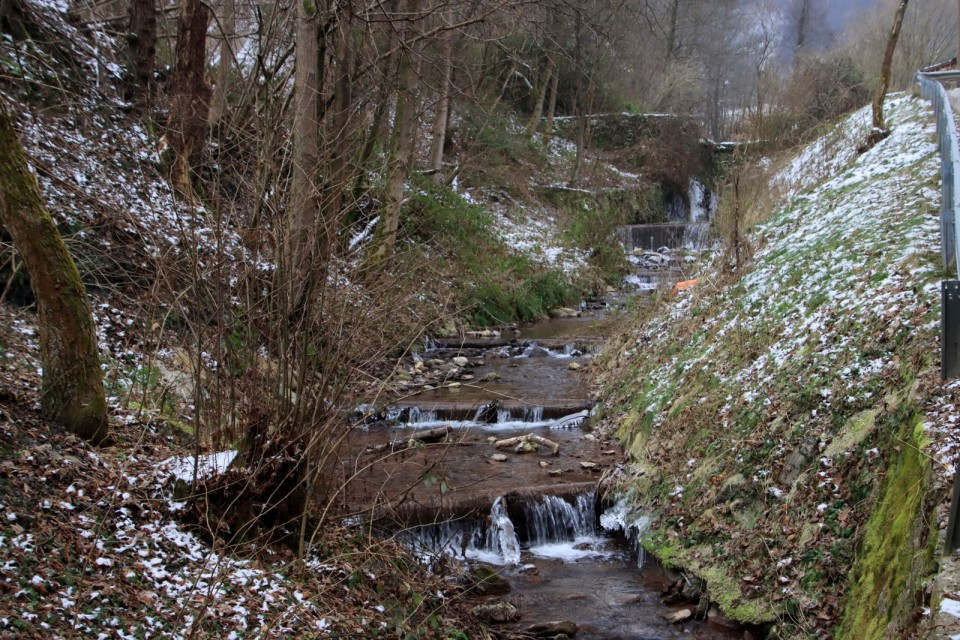 2021_01_16 Leskovec v Podborštu (  718 m ) - foto povečava