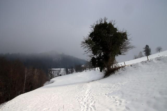 2021_01_17 Viška Peč - Lovrenc - Mrzlo polje - foto