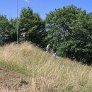 2021_07_24 Lisca -10. jubilejna košnja trave