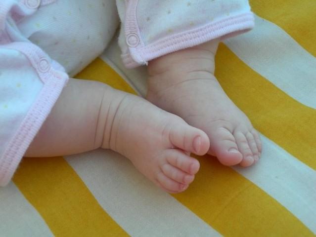 Male žgečkljive nogice