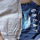 Sv. sive bermude Zara in majica GAP z morskim psom