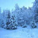 zjutraj sneg, ob povratku moča