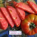 Tomato Varieties 2011