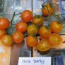 Isis Baby - cut fruits