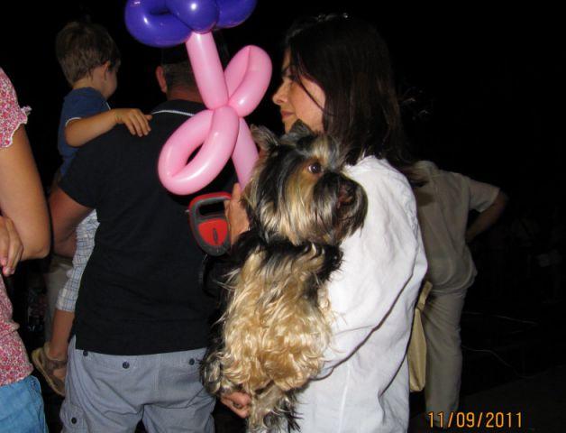 Bol2/9/2011 - foto
