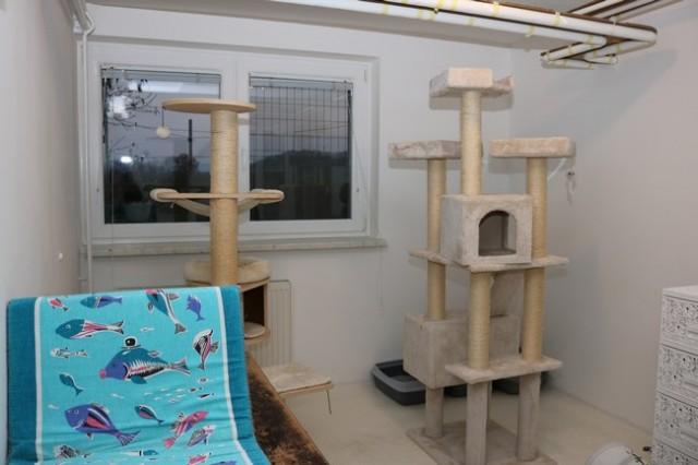 V novem domu 3 - foto