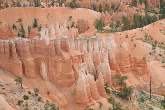 Potep po zda- bryce narodni park - foto
