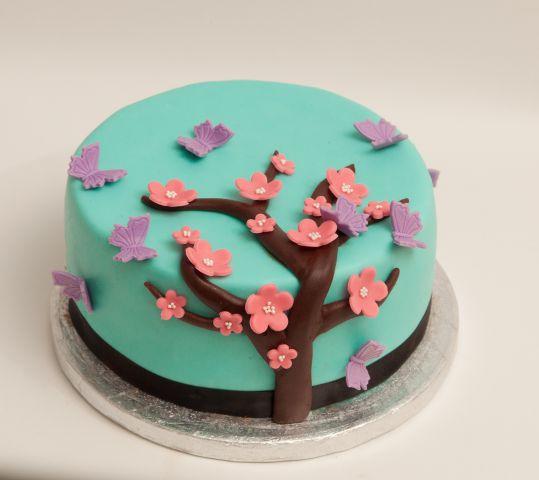 Češnjev cvet...
