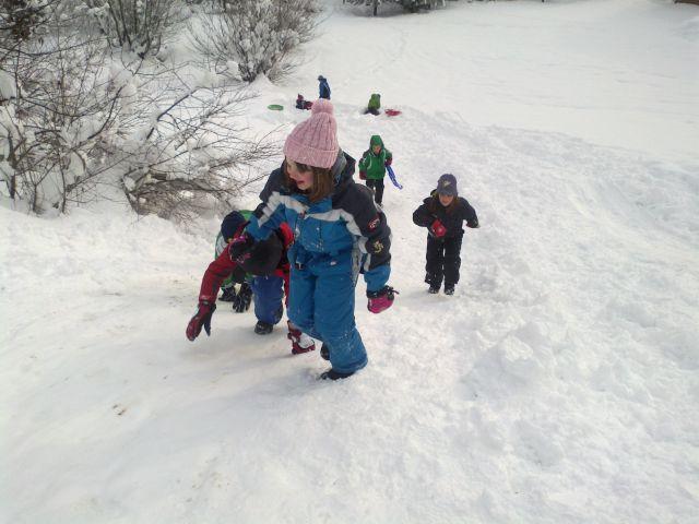 Zimsko rajanje - foto