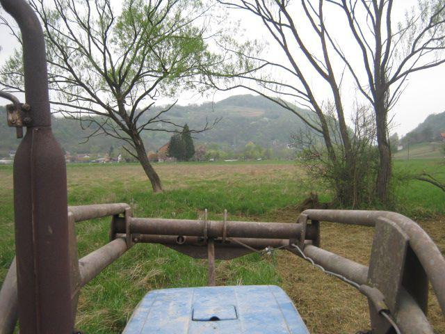 Malčiranje 2014 - foto