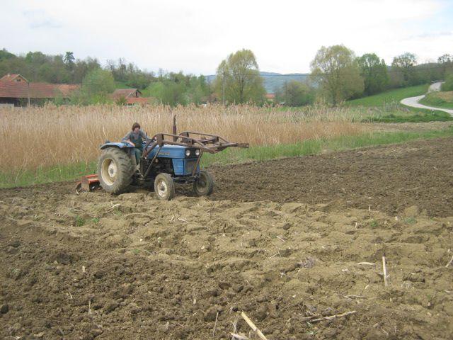 Priprema njiva i sijetva kukuruza 2014 - foto povečava