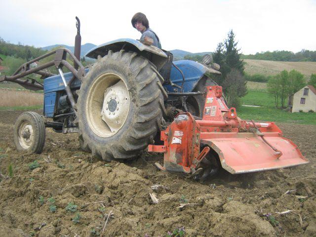 Priprema njiva i sijetva kukuruza 2014 - foto