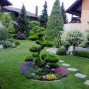 Naš cvetoči vrt
