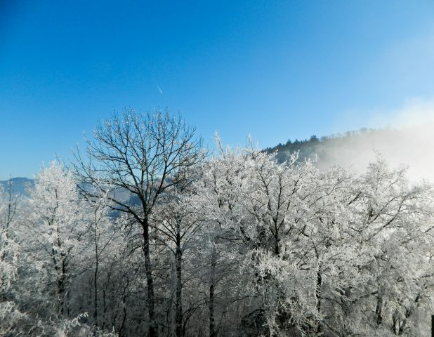Okolica Kamnika - foto