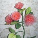 rdeče vrtnice v lončku