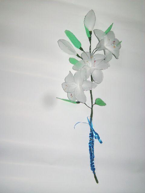 Bela lilije