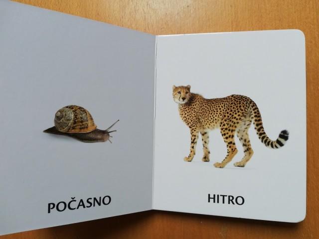 Knjiga, kartonka = 1 eur