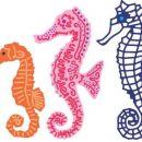morski konjički