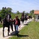 2011-kramžar-2