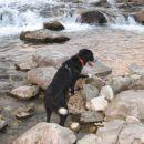 Lov na vodne škrate... v Bistrici jih je baje veliko. In to je Pegina glavna služba zadnje