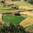 Polje Huarazom
