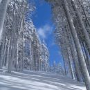 Ravno na novo zapadli sneg in jasno nebo sta krasni kombinaciji