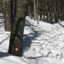 Narava se ne meni za pomlad, sneg bo tu še dolgo ostal