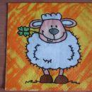 št. 33 - ovčka
