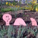 črviček na mojem vrtu