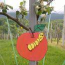 Še novi: jabolko,
