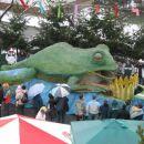 Velika žaba!
