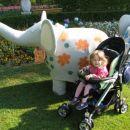 Kako lep slonček!