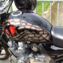 air brush snake eye 2